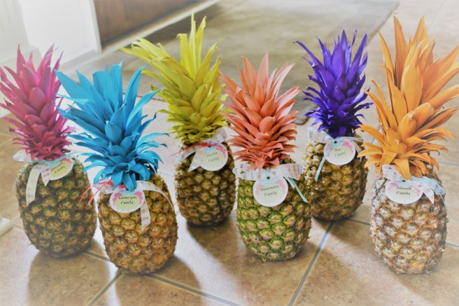 6.30.17 Morgans 14th Pineapple Party! (2)