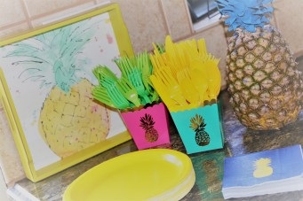 6.30.17 Morgans 14th Pineapple Party! (27)