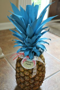 6.30.17 Morgans 14th Pineapple Party! (4)
