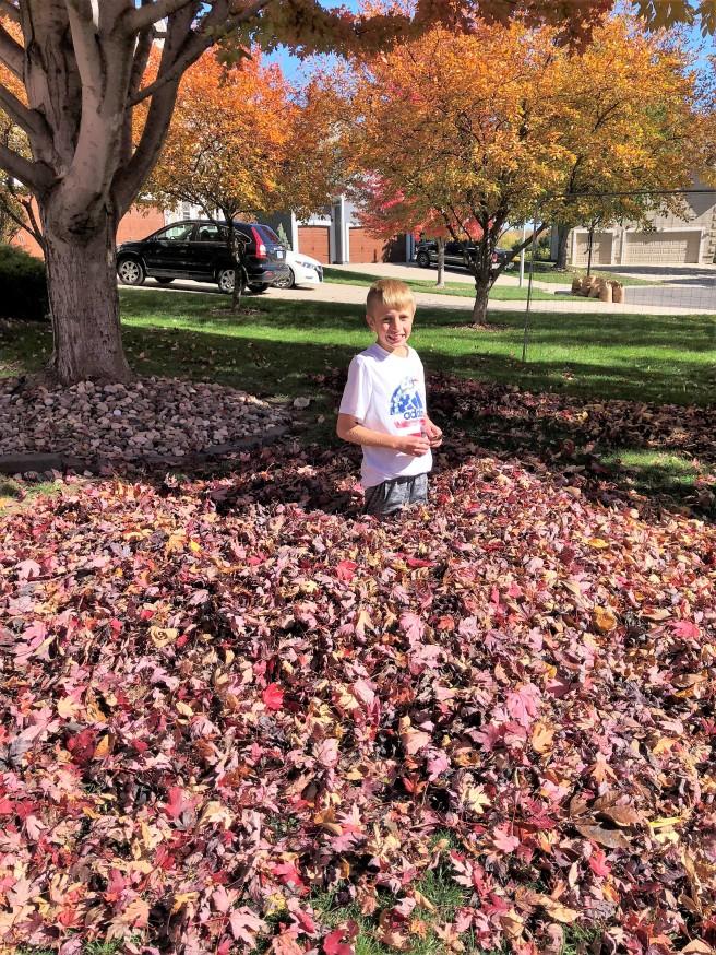 10.27.18 Fall Leaves! (4)